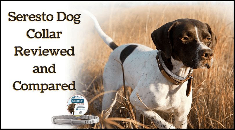 Photo of Seresto Dog Collar Review – The Best Brand