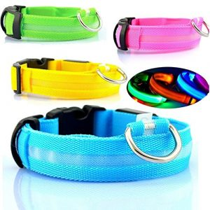 Safety-Dog-LED-Collar-Flashing-Light-up