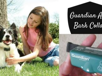 guardian by petsafe anti bark collar
