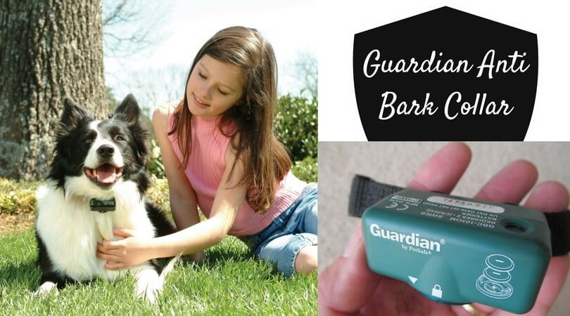 Photo of Guardian by Petsafe Anti Bark Collar Reviewed and Compared