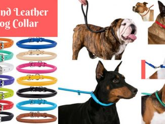 Round Leather Dog Collar