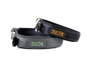Mighty Paw Neoprene Padded Dog Collar