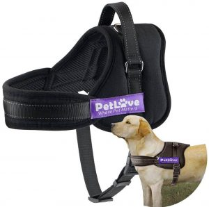 PetLove Dog Harness Soft Leash