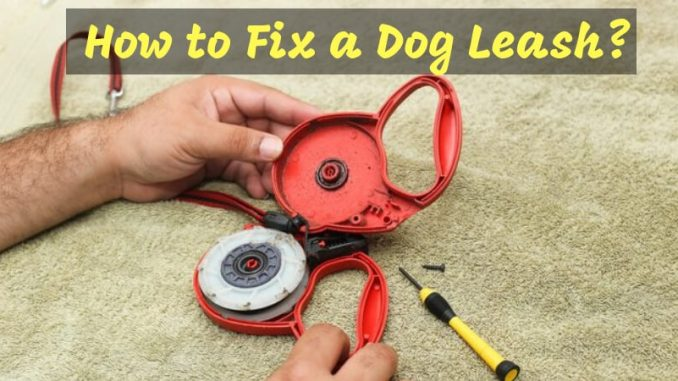 How to Fix a Dog Leash
