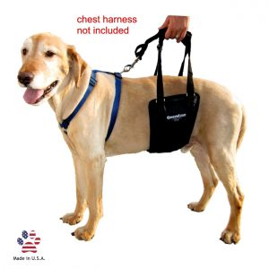 GingerLead Rehabilitation Harnesses