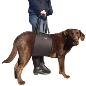 Labra Canine Sling Lift