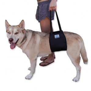Love Pets Dog Lift Support Harness
