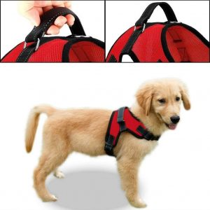 Copatchy Dog Harness with Handle