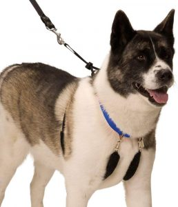 Dog Halter Humane Pet Training Halter Harness