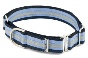 Martingale Adjustable Collar for Dogs